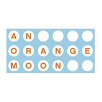 An Orange Moon Vintage shop