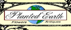 Planted Earth Antique logo