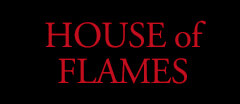 House of Flames Vintage shop